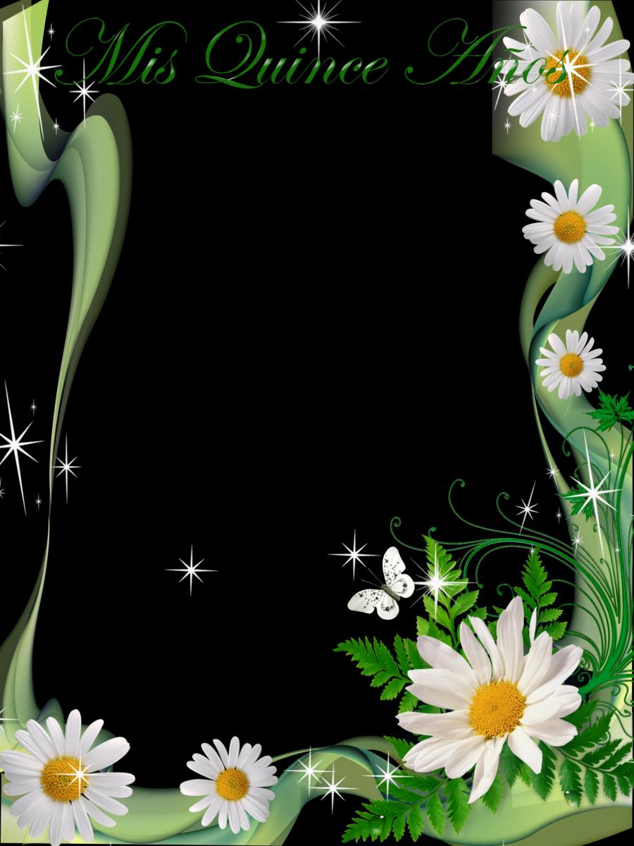 Pin de Silvana Dragneva en cvetia.