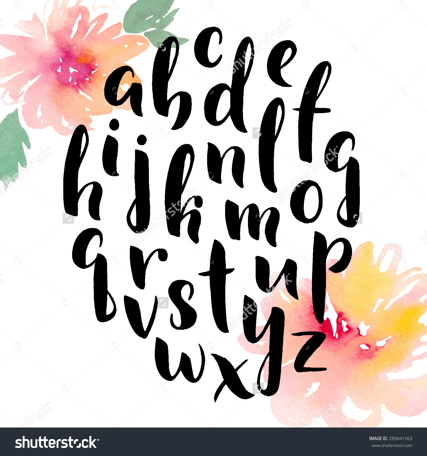 Hand Drawn Alphabet Ink Hand Lettering Stock Vector 289641563.