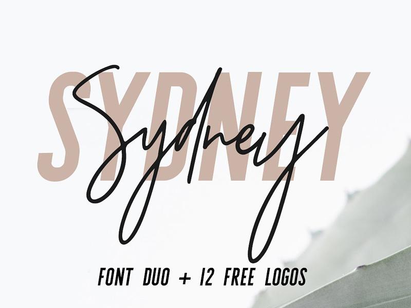 logo fonts.