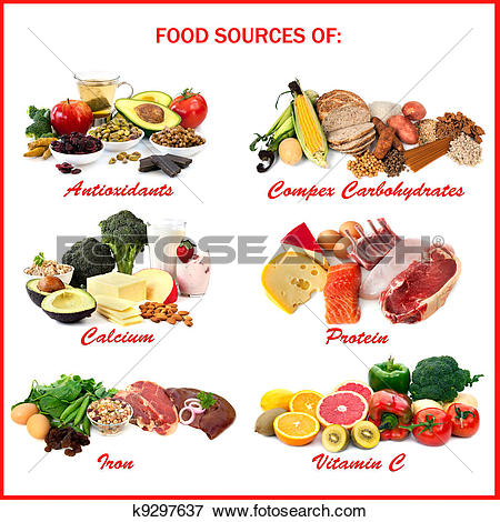 Picture of Food Sources of Nutrients k9297637.