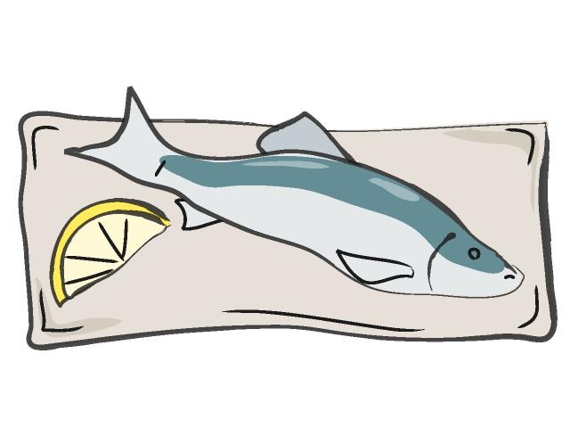 Fish food drawing