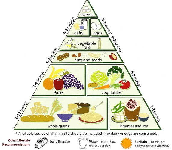 Why We Need a Food Guide Pyramid for Our Media Diet.