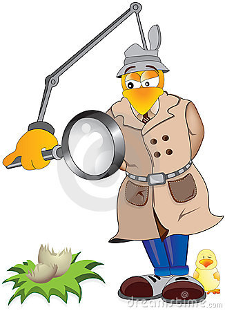 Chicken Inspector Royalty Free Stock Photos.