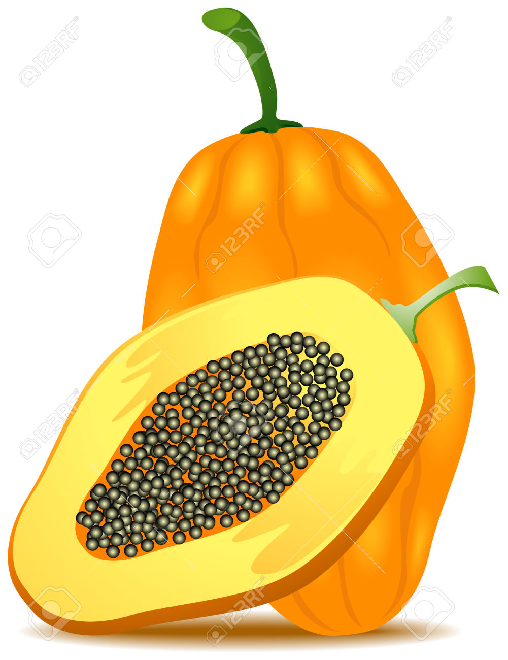 Papaya Illustration With Clipping Path Royalty Free Cliparts.