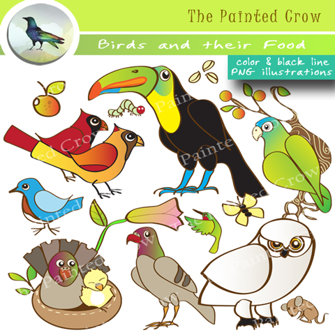 Bird Clipart Set.