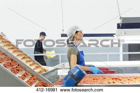 Stock Photography of Worker carrying crate of tomatoes in food.