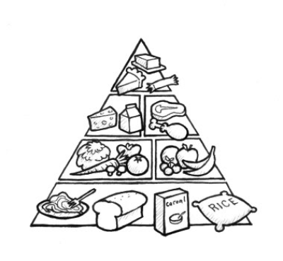 Download Free png Food pyramid for kids clipart black and white.