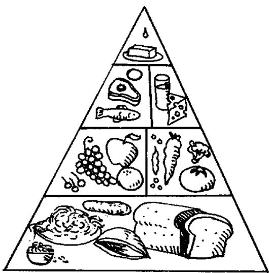 Food pyramid clipart black and white 11 » Clipart Station.