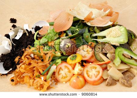 Food Scraps Banco de imágenes. Fotos y vectores libres de derechos.