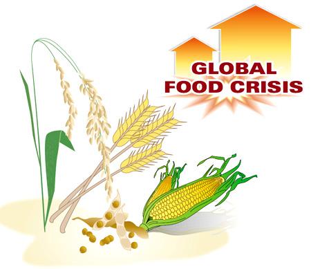 Crop Shortage Looms.