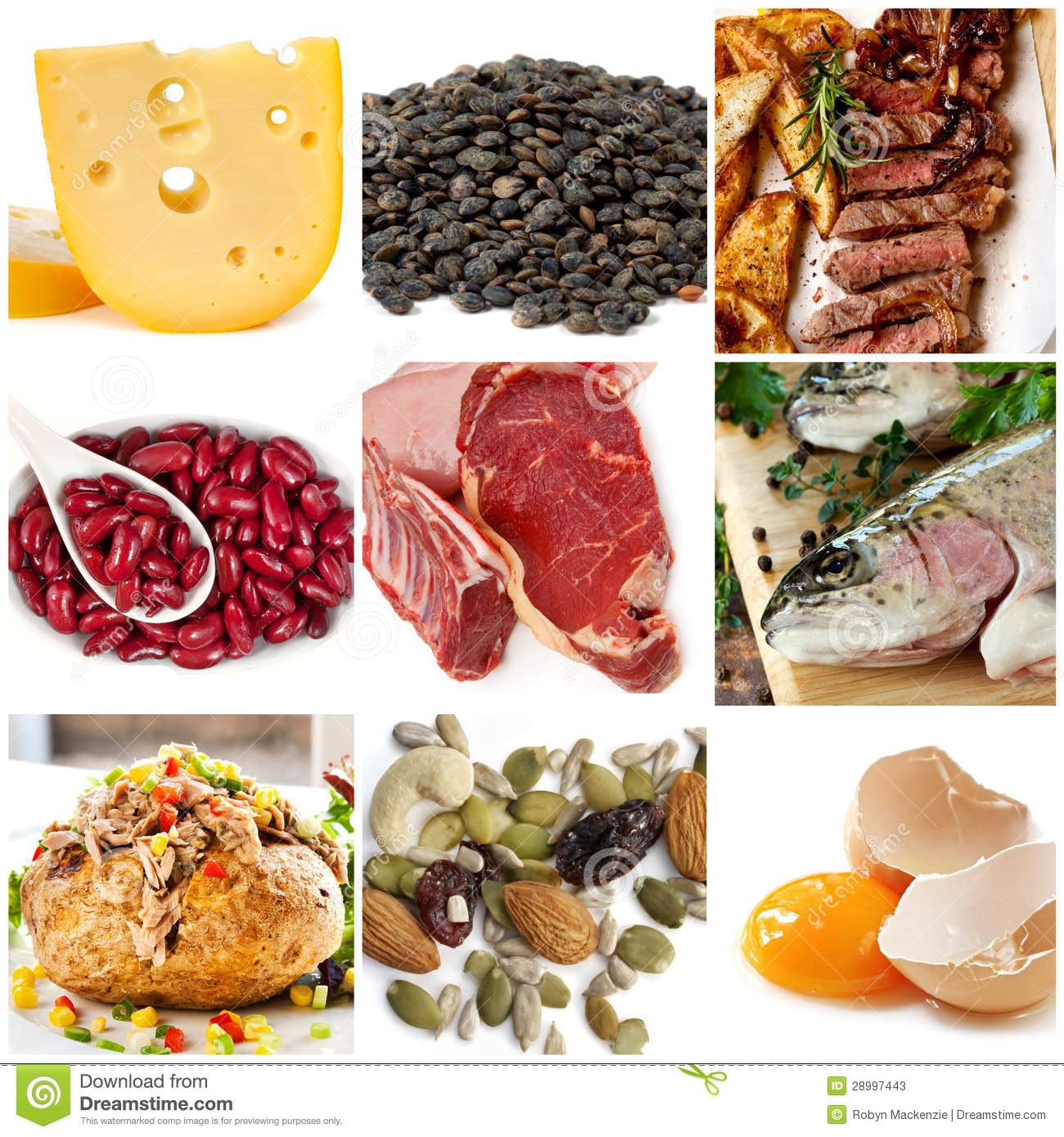 Food source clipart.
