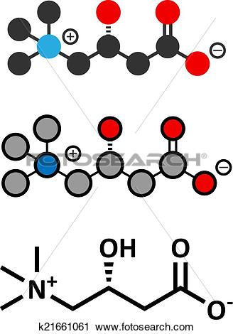 Clipart of Carnitine molecule, chemical structure. Often found in.