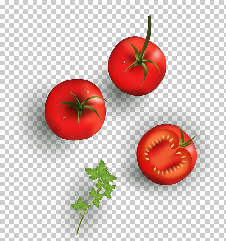 Cherry tomato Vegetable Drawing Food, texture cartoon tomato.