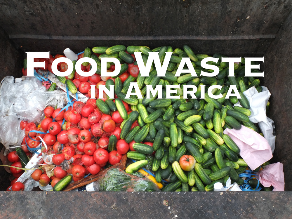 Similiar Food Waste In America Keywords.
