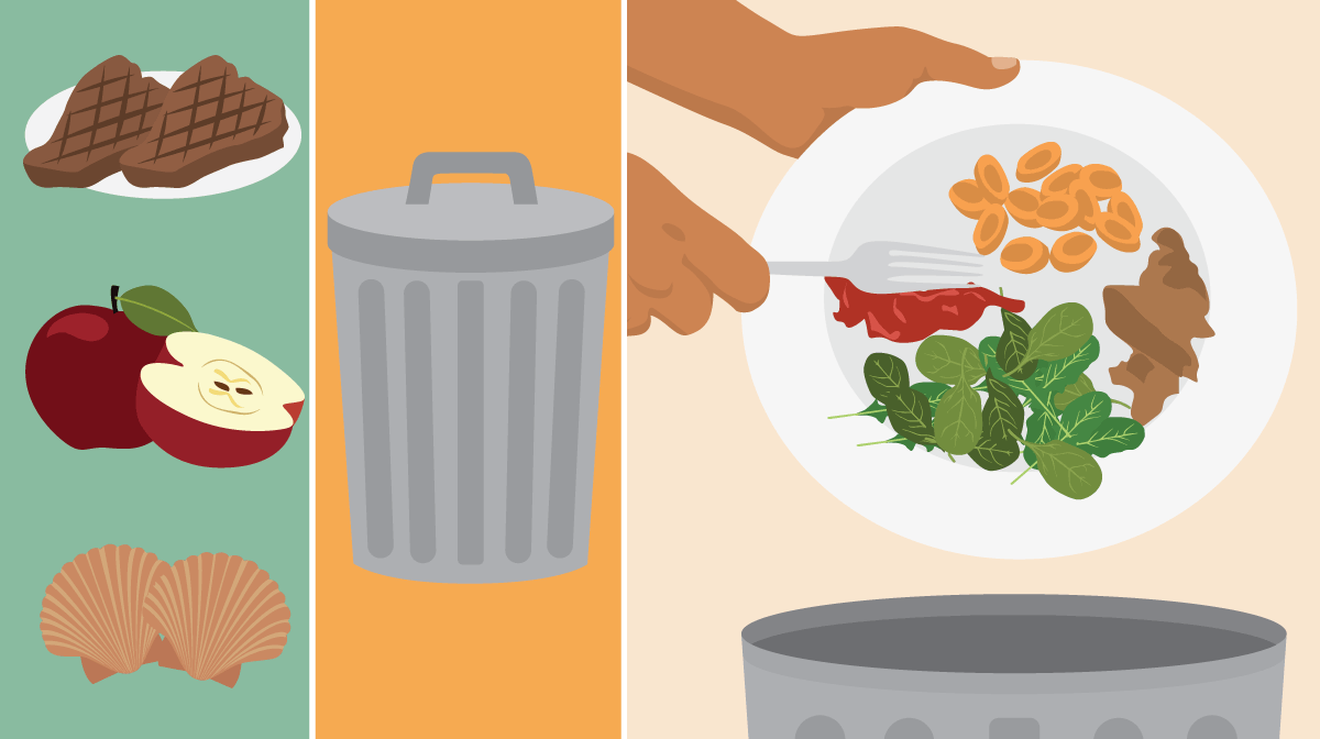 Understanding Food Waste.