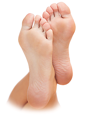 Foot.png (300×401) #43903.