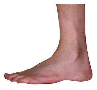 Foot Png (104+ images in Collection) Page 2.