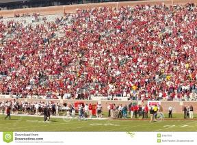 Football Stadium Crowd Clipart.