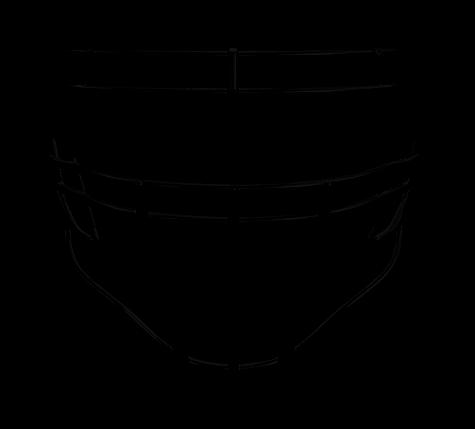 S2BDC Face Mask.