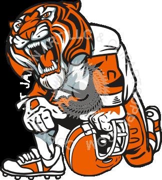 tiger kneeling.