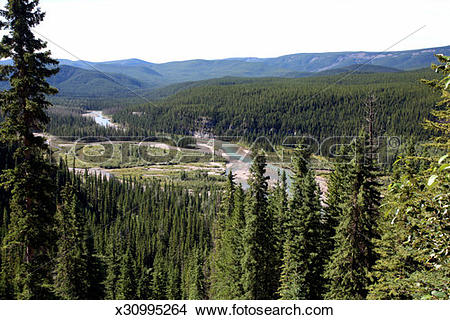 Stock Photo of Clearwater River in the foothills of Alberta.