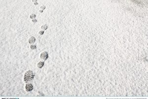 Footprints in the snow clipart 4 » Clipart Portal.