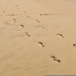 Free Footprint In The Sand Clipart.
