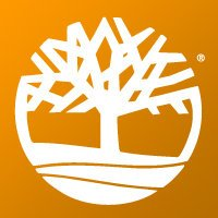 9 Best Photos of Company With Footwear Tree Logo.