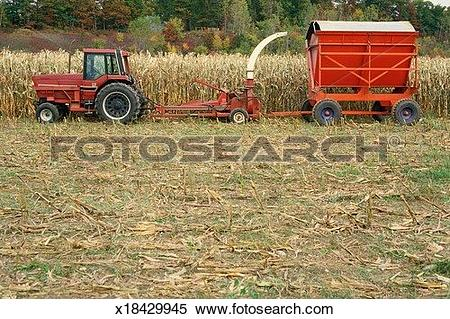 Stock Image of Forage harvester x18429945.