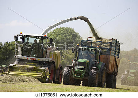 Stock Photography of Forage harvester, grass cutting, Silage.