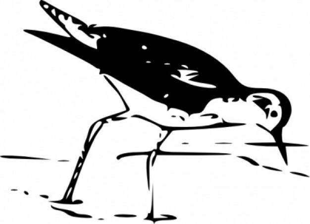 yellow leg bird foraging clip art.