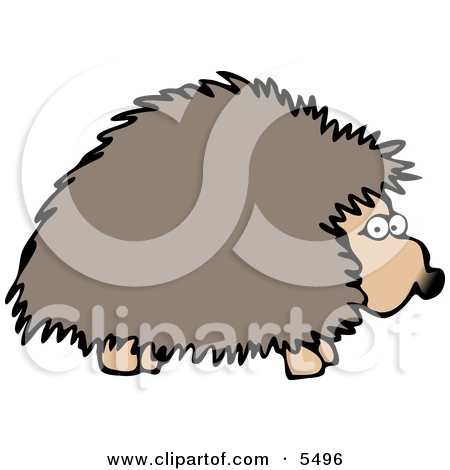 Adult Hedgehog Foraging at Night for Food Clipart Illustration by.