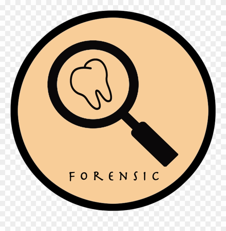 Forensic Dentistry Clipart (#1200426).