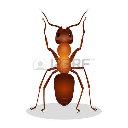 158 Queen Ant Stock Illustrations, Cliparts And Royalty Free Queen.