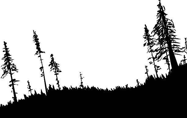 Swedish Forest Clip Art, Vector Images & Illustrations.