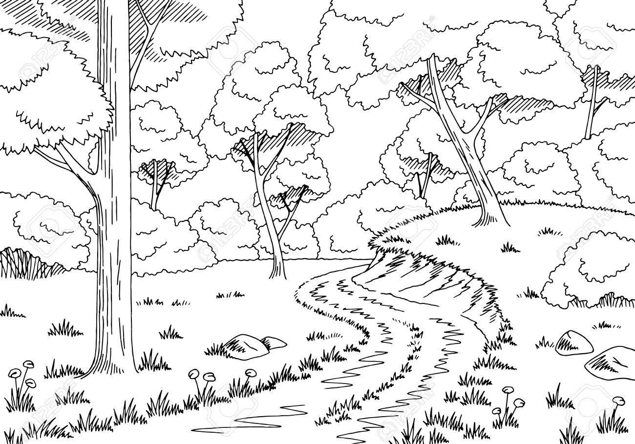 Forest road graphic black white landscape sketch illustration...