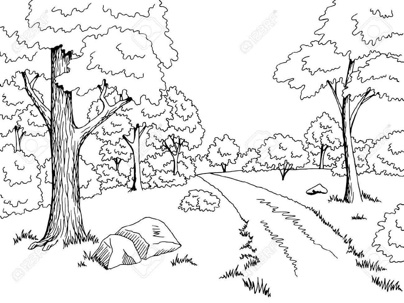 Forest road graphic art black white landscape sketch illustration...
