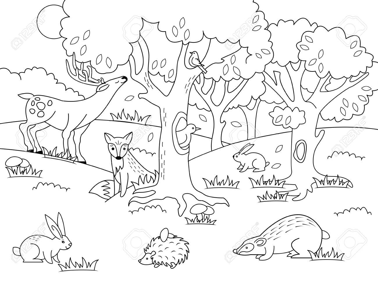 Cartoon forest coloring vector illustration. Black and white...