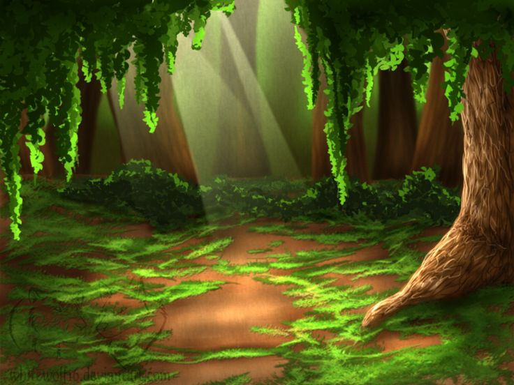 forest background.