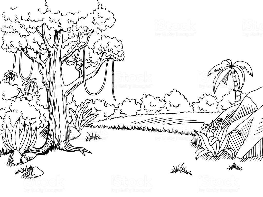 Jungle Forest Graphic Black White Landscape Sketch Illustration.