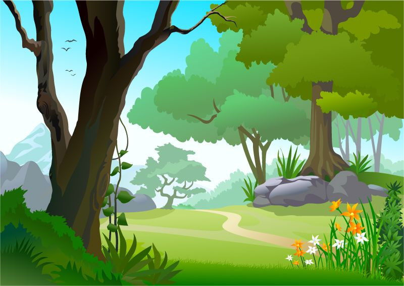 The Forest Path Vector Illustration.
