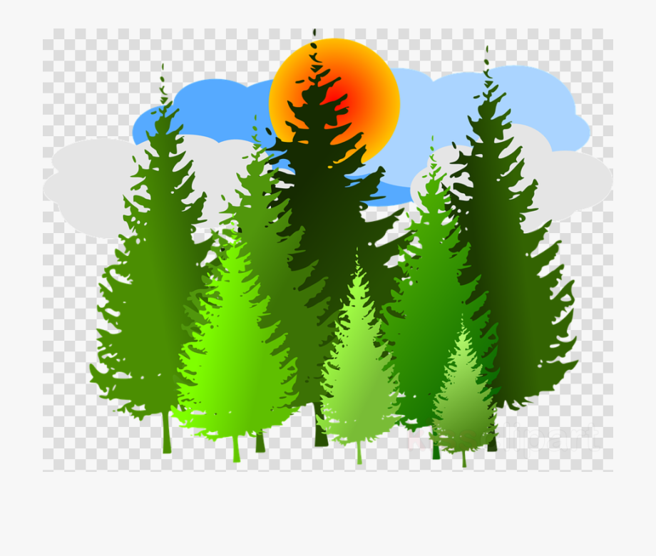 In The Forest Clipart Transparent Background.
