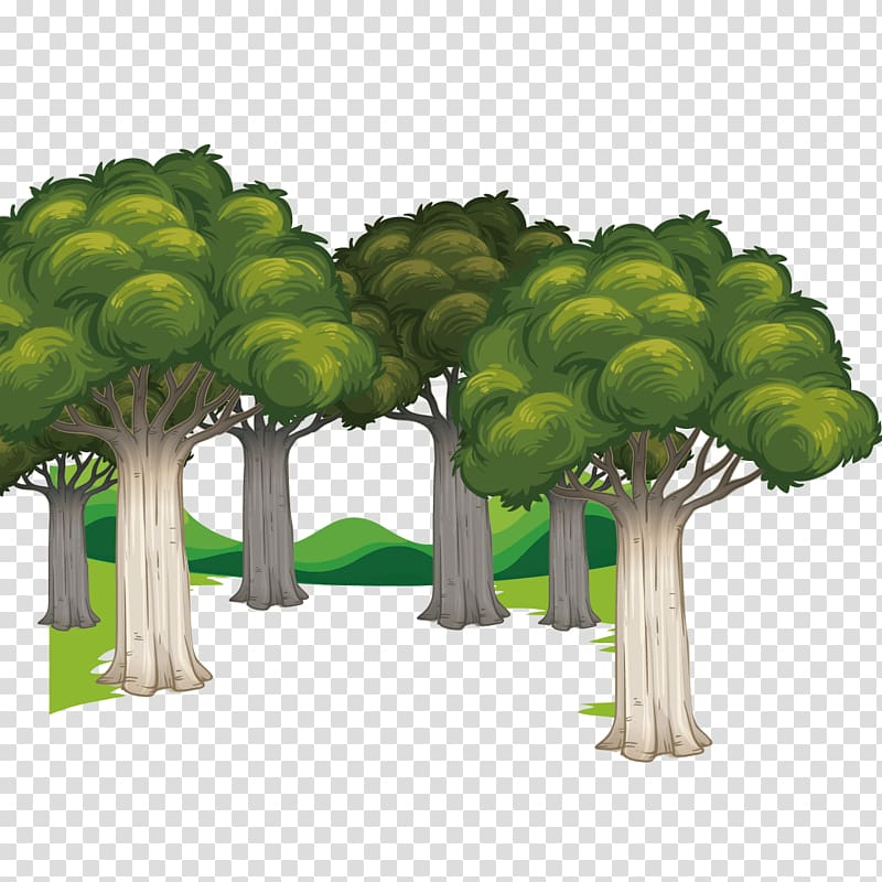 Euclidean Forest, Forest transparent background PNG clipart.