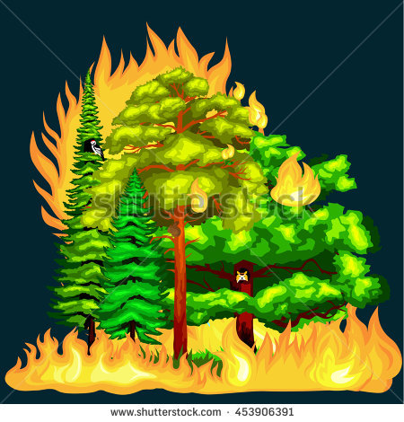 Forest Fire Landscape Damage Nature Ecology Stock Vector 453906391.