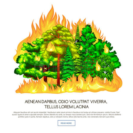 4,705 Forest Fire Stock Vector Illustration And Royalty Free.