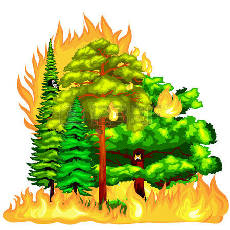 570 Forest Damage Stock Vector Illustration And Royalty Free.