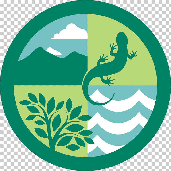 Ecosystem Forest ecology Logo Natural environment, Edu.