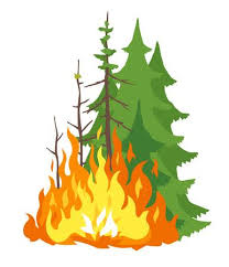 Fire Season / Burning Restrictions.