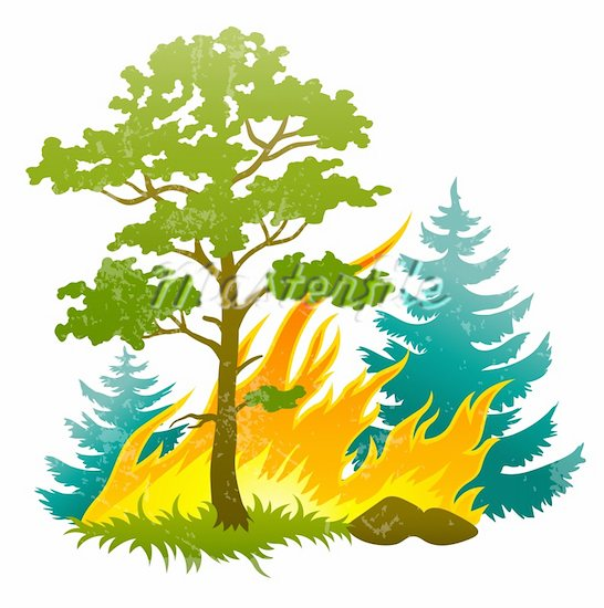Clipart forest fire.