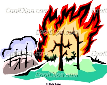 Forest fire Vector Clip art.